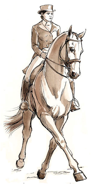 Why The Half Pass Cannot Be Improved - The Crystal System Dressage