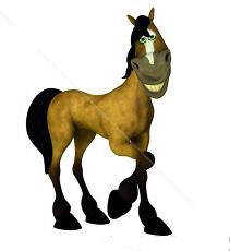 Novice Horse