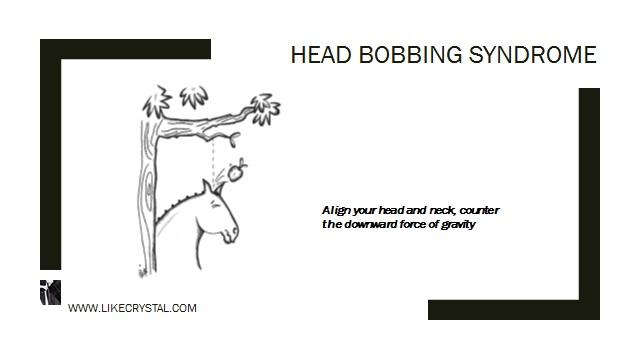 Q11 – Are You Head Bobbing?