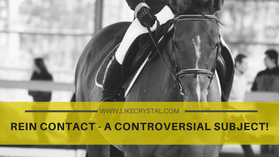 REIN CONTACT – A CONTROVERSIAL SUBJECT!