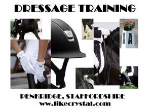 Dressage Training Penkridge