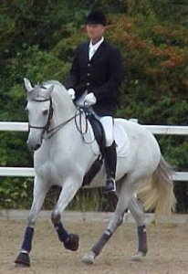 Dressage Training