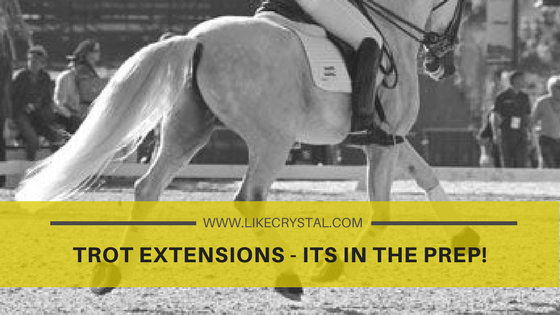 Trot Extensions – Its In The Prep!