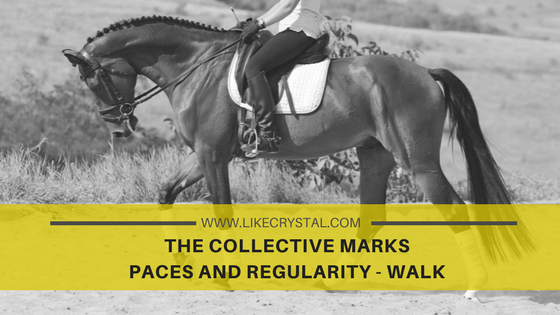 COLLECTIVE MARKS – PACES AND REGULARITY – WALK