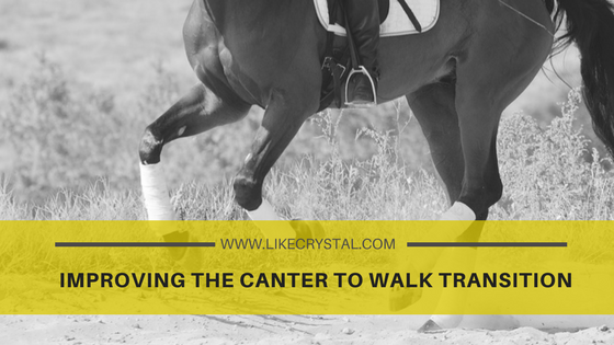 Improving the Canter to Walk Transition