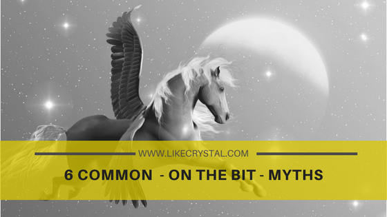 6 COMMON  – ON THE BIT – MYTHS