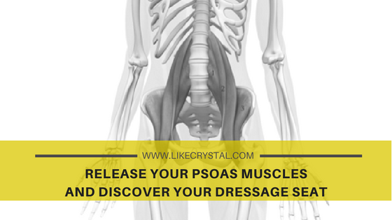 Release your PSOAS MUSCLES and discover your dressage seat