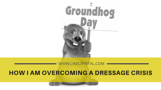 How I am overcoming a Dressage CRISIS