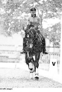 Fair Weather Rider
