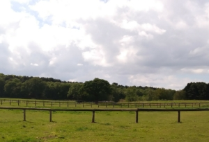 Livery Staffordshire